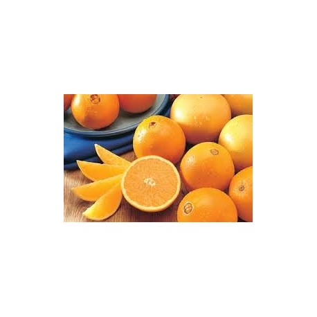 Orange Navel 5Kg