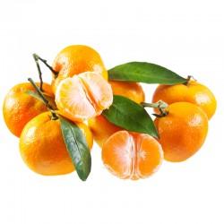 Mandarinas Clementinas 15 Kg