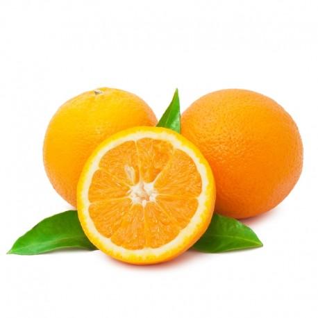 Naranja Zumo pequeña 20 Kg