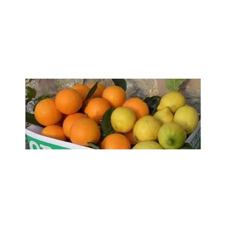 Mixta 8k Naranjas 2K limones 10Kg.