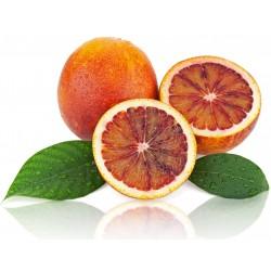 10 KG Naranja Sanguinelli