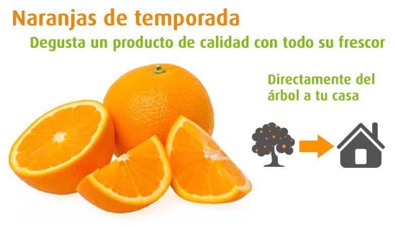 Nos oranges
