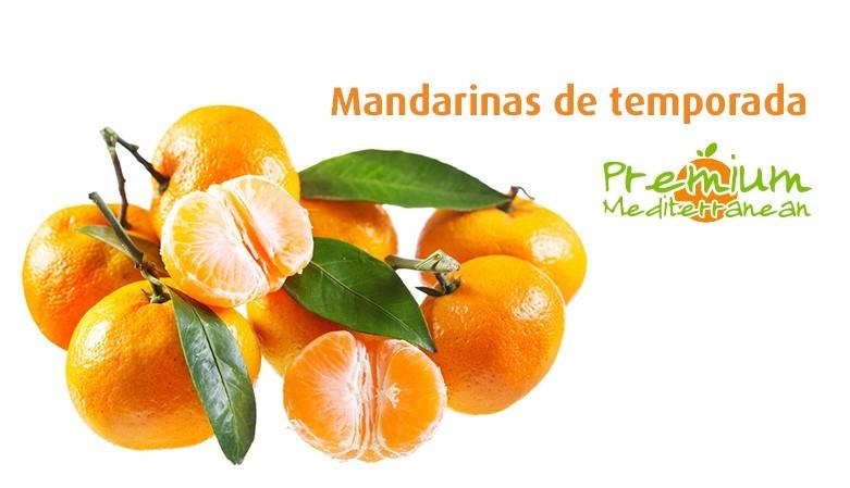 Saison Tangerines